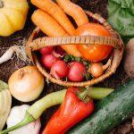 米、野菜、果物、全部タダでもらえるお得なサイトがある!