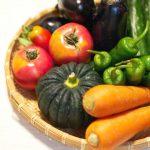 資料請求するだけで人気商品・旬の野菜をタダでもらえるサービスがある